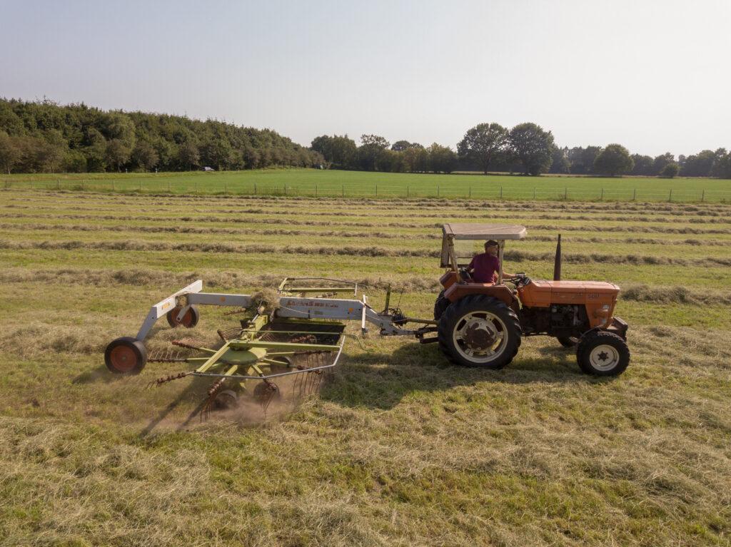 Heuernte Traktor